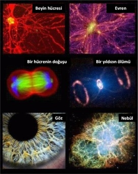 evren-insan